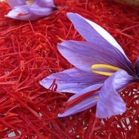 Sử dụng Saffron tăng cường hệ hô hấp hiệu quả nhất
