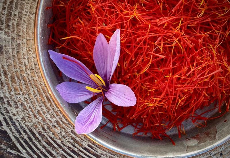 """Saffron – Nhụy hoa nghệ tây - một loại vật liệu được mệnh danh là """"vàng đỏ"""" ở vùng Tây Á và Địa Trung Hải"""