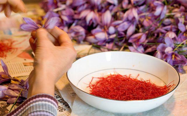4 cách sử dụng Saffron mang đến hiệu quả tối ưu nhất