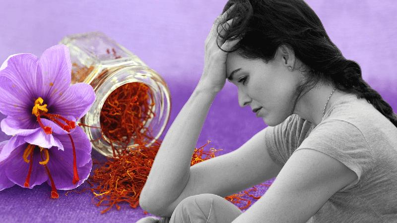 Hoa nghệ tây có công dụng hỗ trợ các bệnh trầm cảm, mất trí nhớ