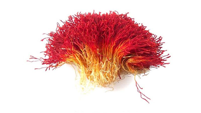 Sử dụng Saffron giá rẻ 99.000đ/gram có tốt không?